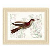 Hummingbird Scene I Framed Art Print