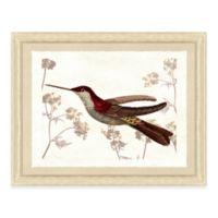 Hummingbird Scene III Framed Art Print