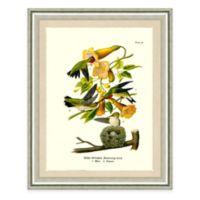 The Framed Giclée Hummingbird Print Wall Art