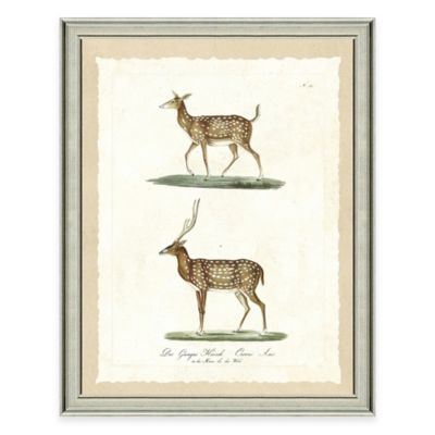 Buy Antique Silver Framed Art from Bed Bath & Beyond