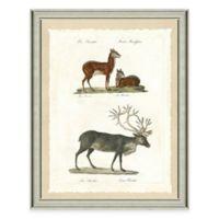 The Framed Giclée Deer and Elk Print Wall Art