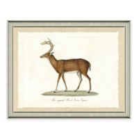 The Framed Giclée Deer Print Wall Art