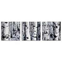 Aspen Triptych Contemporary Metal Wall Art in Black/White