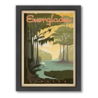 Everglades National Park Framed Wall Art by Anderson Design Group