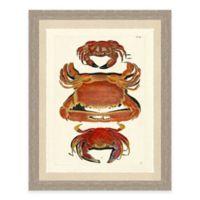 Framed Giclée Red Crabs Print I Wall Art