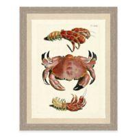 Framed Giclée Red Crabs Print II Wall Art