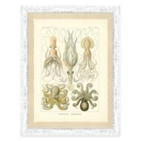 Framed Giclée Octopi and Jellyfish Print Wall Art