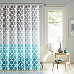 Dani Shower Curtain and Hook Set in Teal
