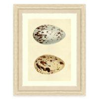 Double Egg I Framed Art Print