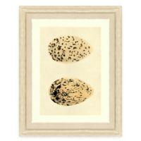 Double Egg II Framed Art Print