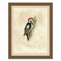 Winter Bird II Framed Art Print
