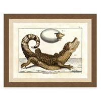 Alligator I Framed Art Print