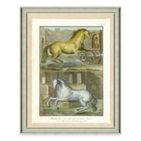 Double Horse Scene II Framed Wall Art Print