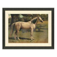 Horse Scene II Framed Art Print
