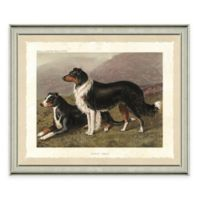 Dog Scene II Framed Art Print