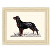 Hunting Dog II Framed Art Print