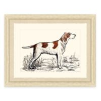 Hunting Dog III Framed Art Print