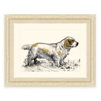 Hunting Dog IV Framed Art Print