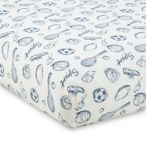 Levtex Baby Little Sport Crib Bedding Collection
