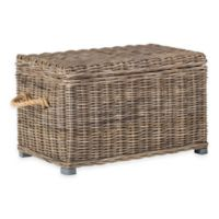 Safavieh Salim Wicker Trunk in Gray
