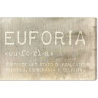 "Oliver Gal ""Euforia"" Canvas Wall Art"