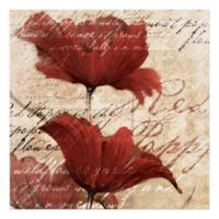 Pied Piper Creative Romantic Red Flowers 16-Inch x 16-Inch Canvas Wall Art