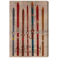 """Oliver Gal Artist Co. """"Aspen Highlands"""" Canvas Wall Art"""