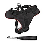 Large Car Safety Harness for Dogs in Black