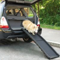 Guardian Gear® Vehicle Ramp for Dogs in Black
