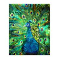 Pied Piper Creative Peacock Power 16-Inch x 20-Inch Canvas Wall Art