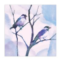 Pied Piper Creative Watercolor Birds 16-Inch x 16-Inch Canvas Wall Art