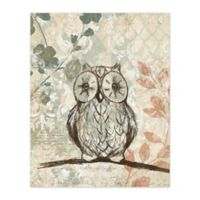 Pied Piper Creative Little Wise Owl 16-Inch x 20-Inch Canvas Wall Art