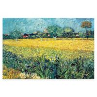 Vincent Van Gogh View of Arles Irises Wall Art
