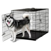 OxGord® Metal Double Door Pet 48-Inch Crate in Black