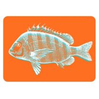 The Softer Side by Weather Guard® 23-Inch x 36-Inch Fish Kitchen Mat in Orange