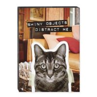 "FromFrank ""Shiny Objects Distract Me"" Cat Plaque"