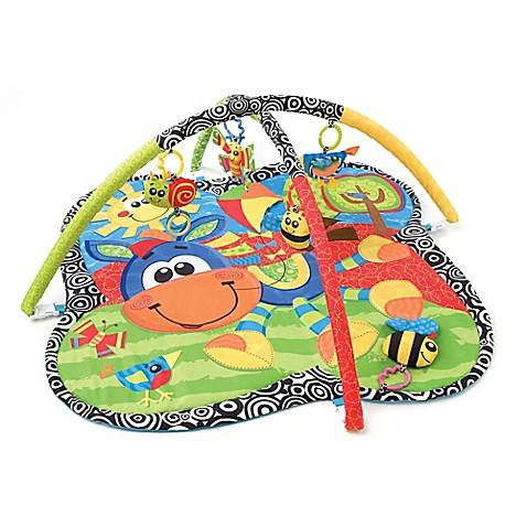 Infant Activity Gym