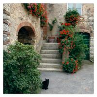 Gatto All Weather Outdoor Canvas Wall Art