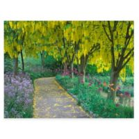 Goldenchain Tree All Weather Outdoor Canvas Wall Art