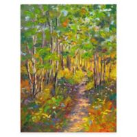 Heavenly Hike All Weather Outdoor Canvas Wall Art