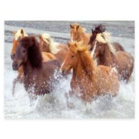 Untamed All Weather Outdoor Canvas Wall Art