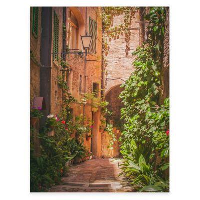 Attractive Hidden Alley All Weather Outdoor Canvas Art