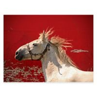 True Grit All Weather Outdoor Canvas Art