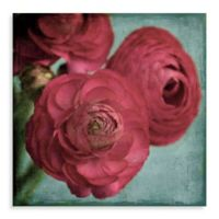Marmont Hill Red Ranunculus 18-Inch x 18-Inch Canvas Wall Art