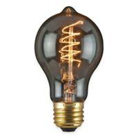 Lumin by Luminance Nostalgia Era 10-Pack 60-Watt 4-Inch Incandescent G40 Globe Bulb in Amber