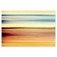 Parvez Taj 30-Inch x 20-Inch Desert Colors Canvas Wall Art