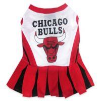 NBA Chicago Bulls Medium Pet Cheerleader Outfit