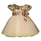 Bonnie Baby Size 2T Ballerina Dress with Floral Lace Top and Tulle Skirt in Ivory