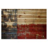 Parvez Taj Texas 36-Inch x 24-Inch Pine Wood Wall Art