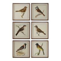 Uttermost Spring Soldiers Bird Prints (Set of 6)